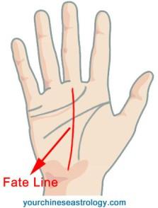 fate-line-1